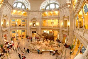 How to plan a trip to The-Smithsonian-museums